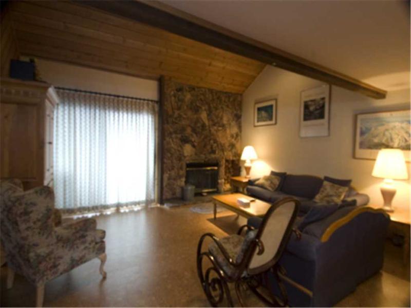 #294 Fascination - Image 1 - Mammoth Lakes - rentals