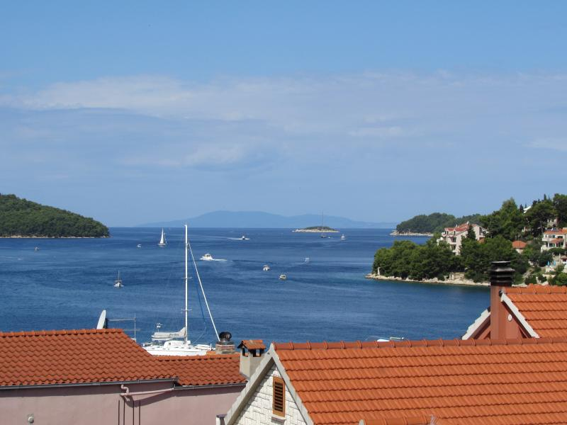 Apartment with a beautiful terrase sea view - Image 1 - Vela Luka - rentals