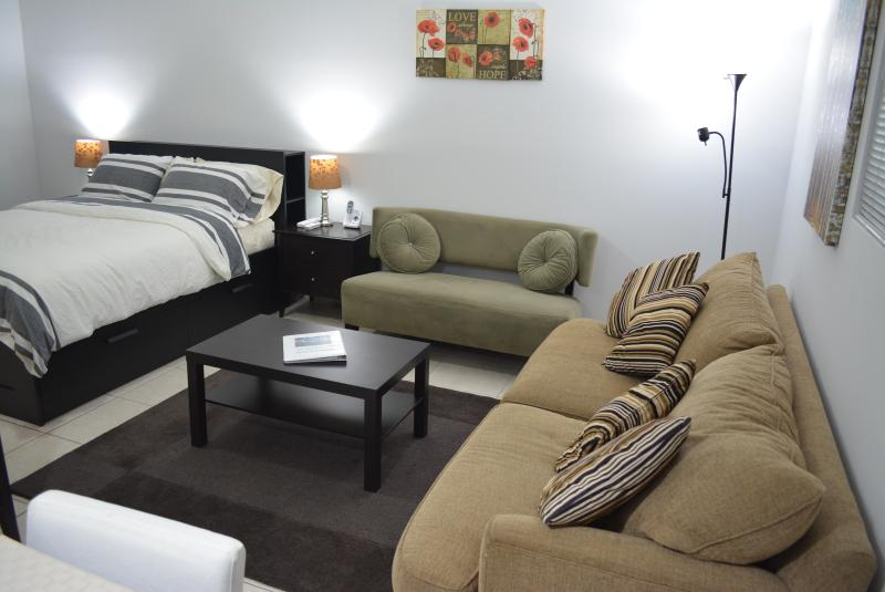 Living room- Love sit & sofa bed - Miami studio with Jacuzzi for rent, Days,Weeks - Coconut Grove - rentals
