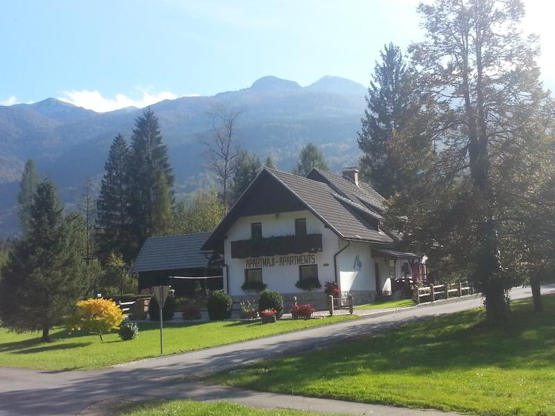 Summer view - Bohinj Lake - ALP Holiday house - Bohinjsko Jezero - rentals