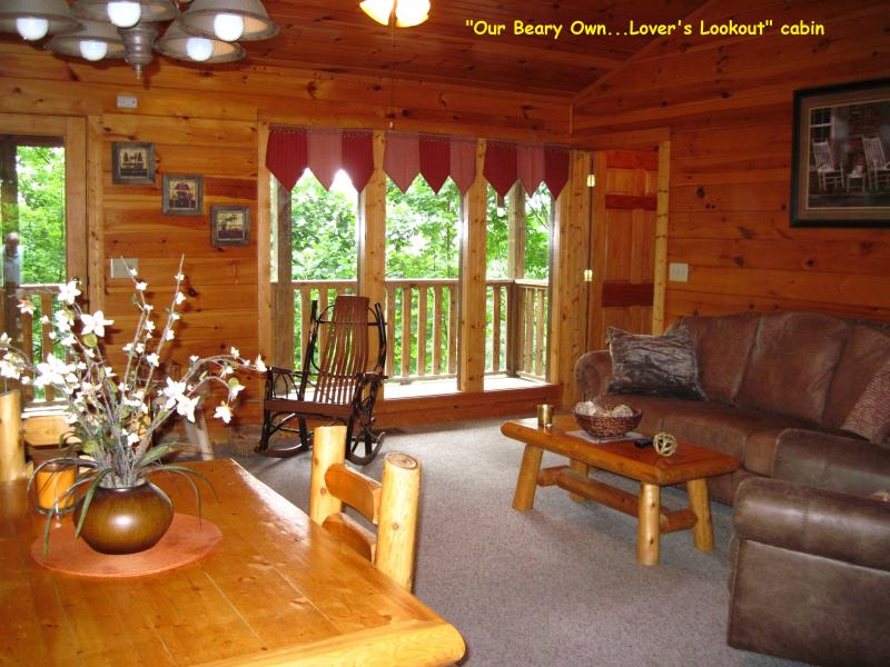 Luxury on a Budget VPrivate Cabin Cpls / Sm Family - Image 1 - Gatlinburg - rentals