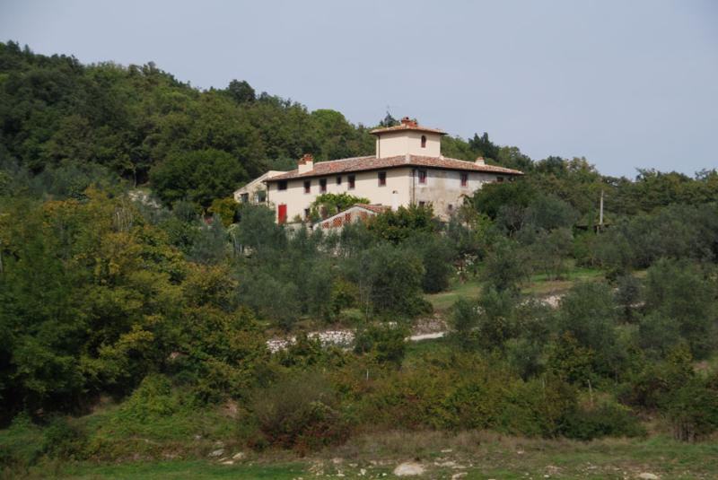 - Ricavoli - Florence - rentals