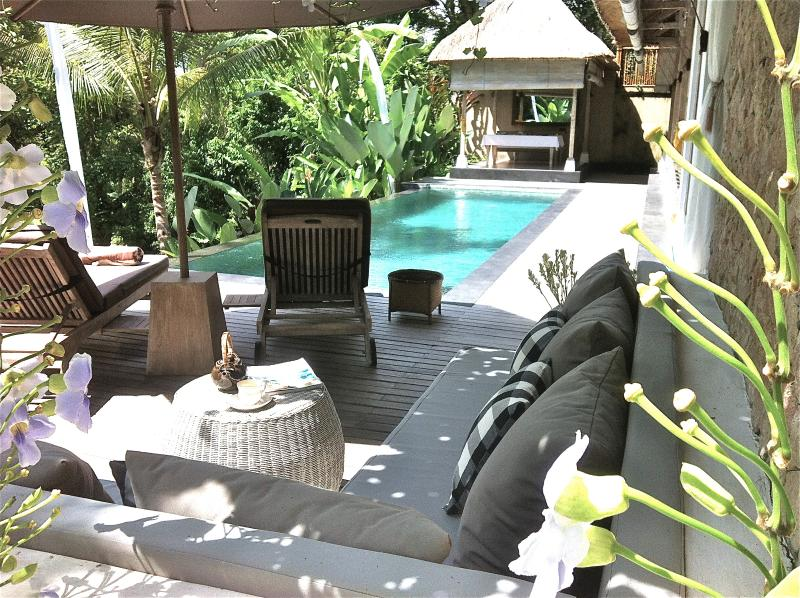 reading, swimming and relaxing by the pool - Secludled escape for a Couple - 20%OFF for May/Jun - Ubud - rentals