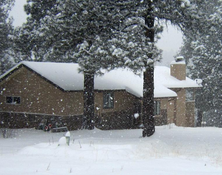 Welcome to the Tree House - Mountain Retreat - Hot Tub, Pool Table - Flagstaff - rentals