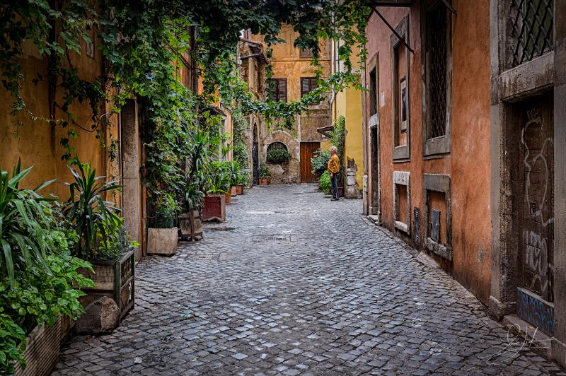 In the medieval heart of Trastevere on a quiet walking street - Charm in the Heart of Historic Rome - Rome - rentals