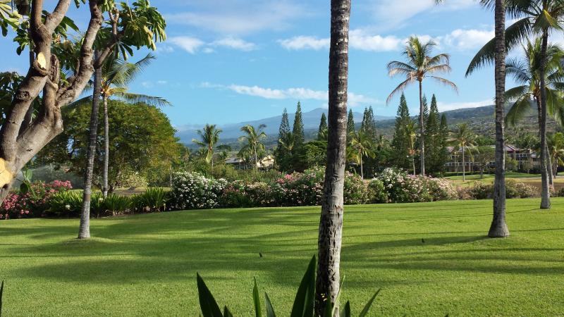 View from main lanai - Kanaloa at Kona - Steps to the Ocean #1302 2B/2B - Kailua-Kona - rentals