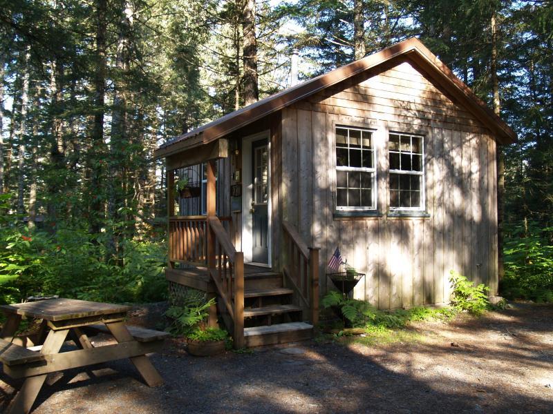 Millane's Serenity by the Sea Exit Glacier Cabin 2 - Image 1 - Seward - rentals