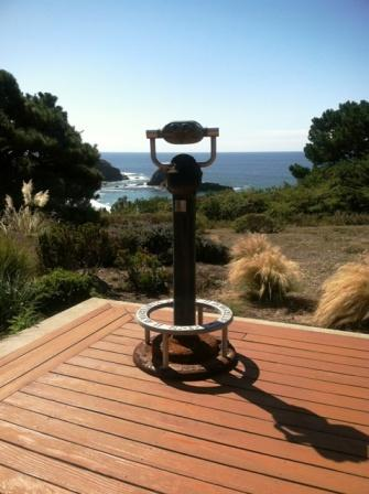 amazing views from back deck - Voyager's Paradise - Voyager - Gualala - rentals