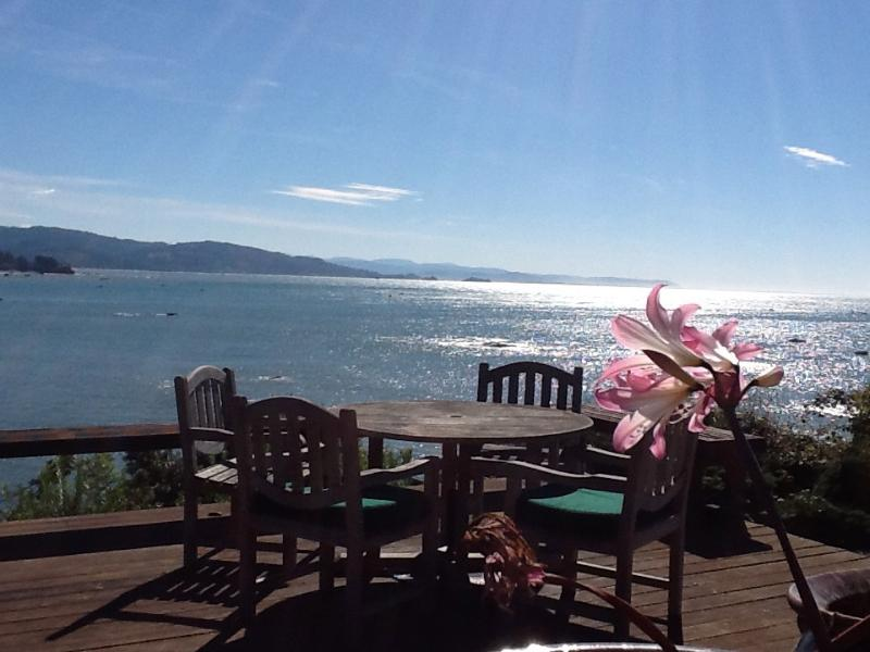 Welcome to 3 Otter's Amazing Views - Amazing Suite with Amazing Views - Brookings - rentals