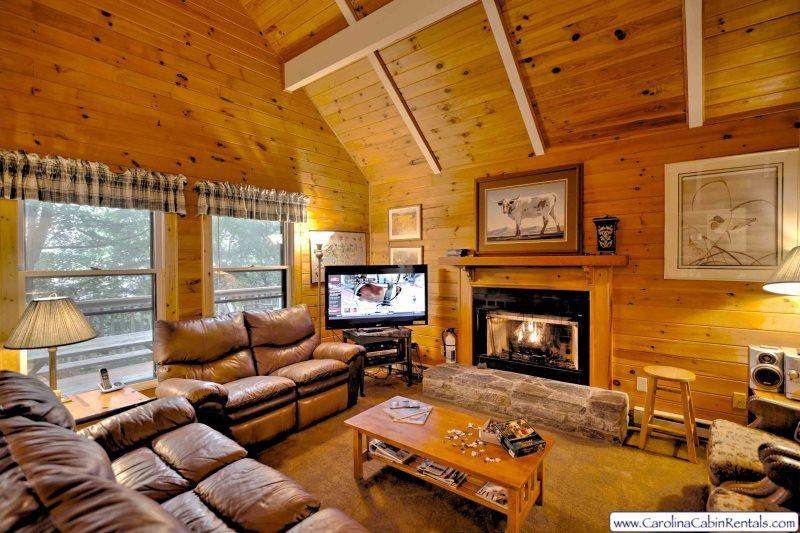 Greenhouse Living Room - Greenhouse - Beech Mountain - rentals