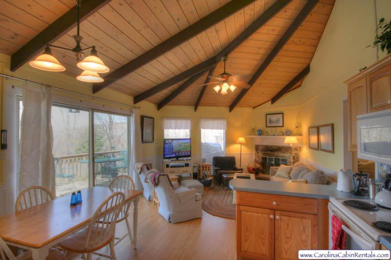Beech Vista Main Living Area - Great View from Living Room - Beech Vista - Beech Mountain - rentals