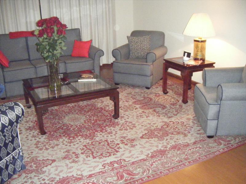 Cuenca Ecuador Furnished Apartment - Image 1 - Cuenca - rentals