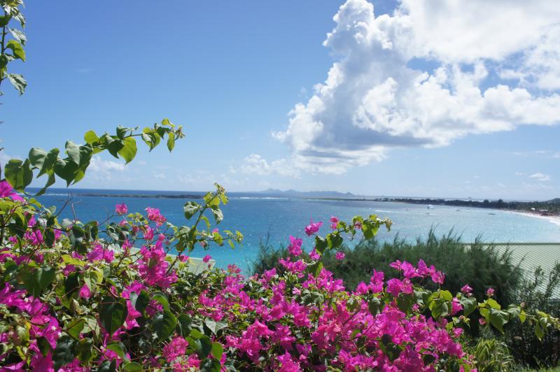 Fabulous studio overlooking Orient Bay, St Martin - Image 1 - Orient Bay - rentals