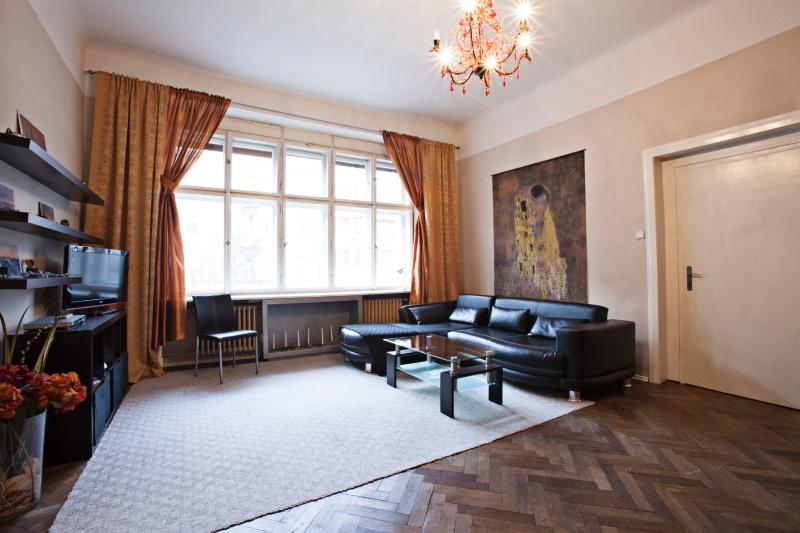 Great room sofa bed huge windows - Spacious  Center 2 bed 1.5 bath - Prague - rentals