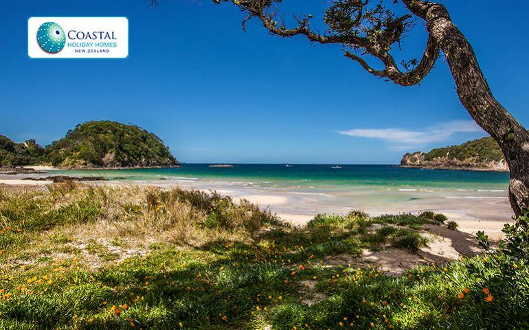 Matapouri Bay - just over the sand dunes from Matapouri Dunes - Matapouri Dunes - Matapouri - rentals