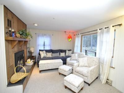 Masterful Living Room - Paradise on Hurricane Creek - Tannersville - rentals