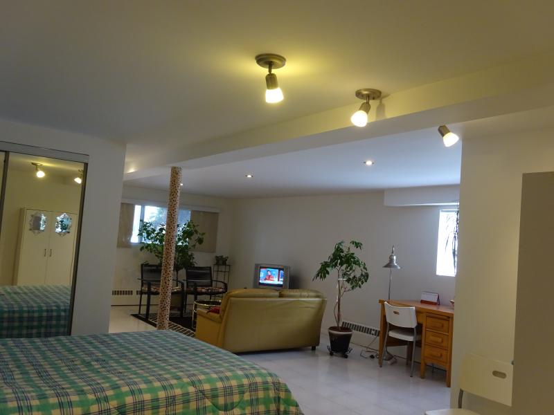 Open concept bedroom+living room - Beautiful Studio apartment 20 min from downtown! - Montreal - rentals