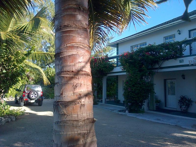 Silver Palm Beach House Turks and Caicos - Silver Palm Beach House Turks and Caicos - Providenciales - rentals