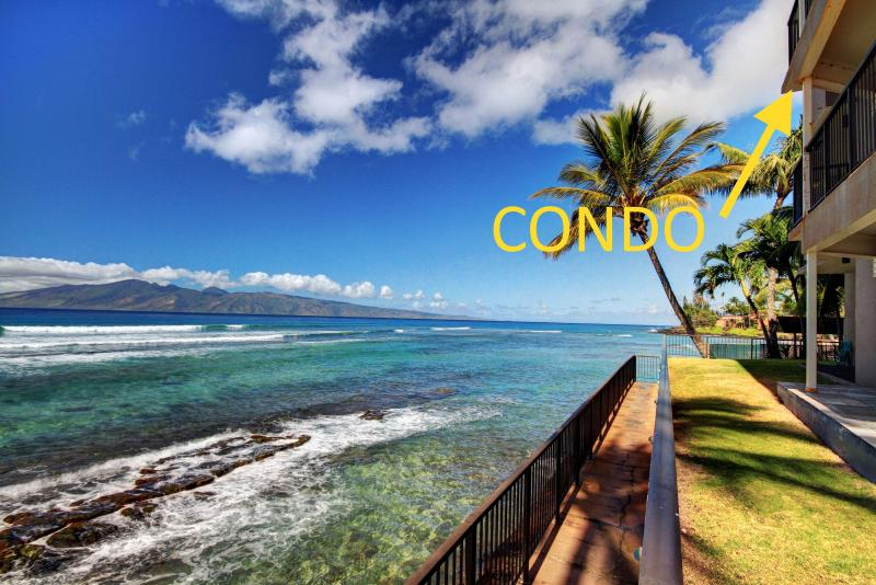 July 8-11|Oceanfront Maui Paradise|Hear Waves 24/7 - Image 1 - Lahaina - rentals
