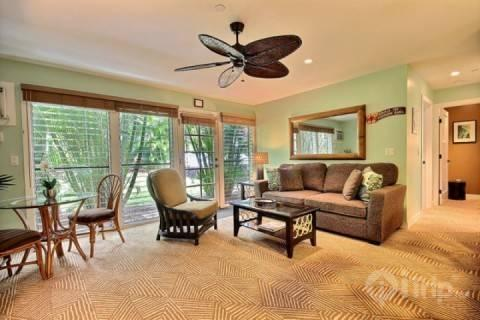 Spacious living space - Great Lahaina Town Location - Aina Nalu Resort 2 bedroom / 1 bath - Lahaina - rentals
