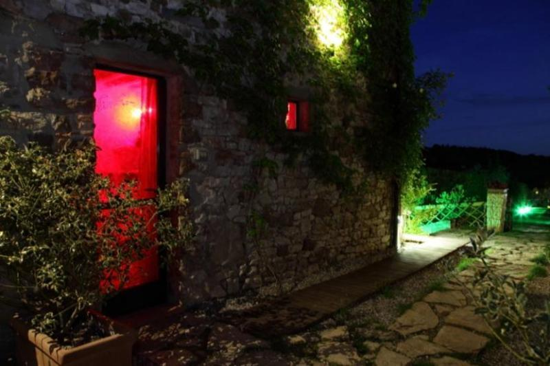 Gaiole-Apartment Stone - Image 1 - Gaiole in Chianti - rentals