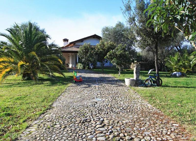 Villa Violetta - Image 1 - Forte Dei Marmi - rentals