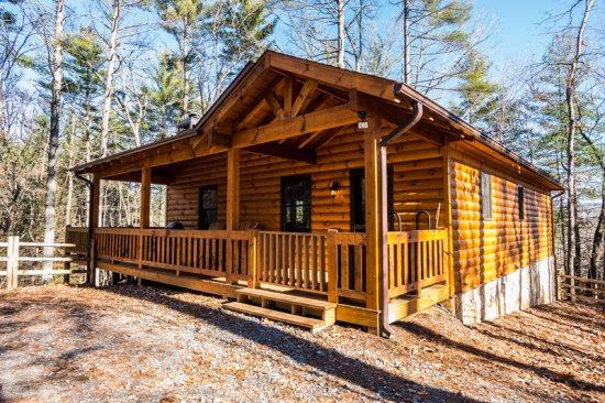 Aska Woodlands - Stay in this beautiful pet friendly cabin with fenced yard and gated porch - Image 1 - Blue Ridge - rentals