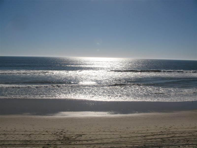 Ideal House in Oceanside (1317 S. Pacific St. #A) - Image 1 - Oceanside - rentals