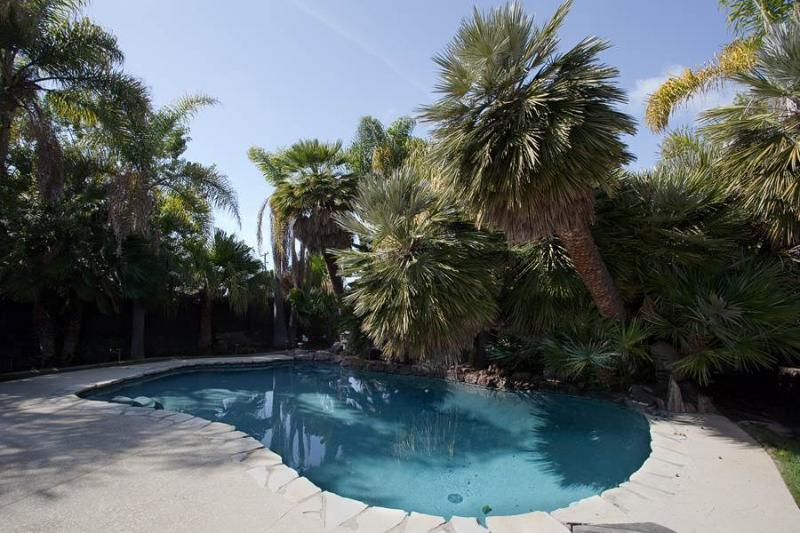 1890 Basswood Ave - Image 1 - Carlsbad - rentals