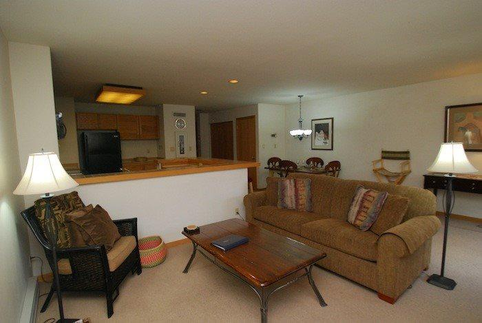Living room featuring a comfortable queen sleeper sofa - Liftside Condominium 21 - Updated appliances, remodeled bathroom, ski area views, walk to slopes! - Keystone - rentals