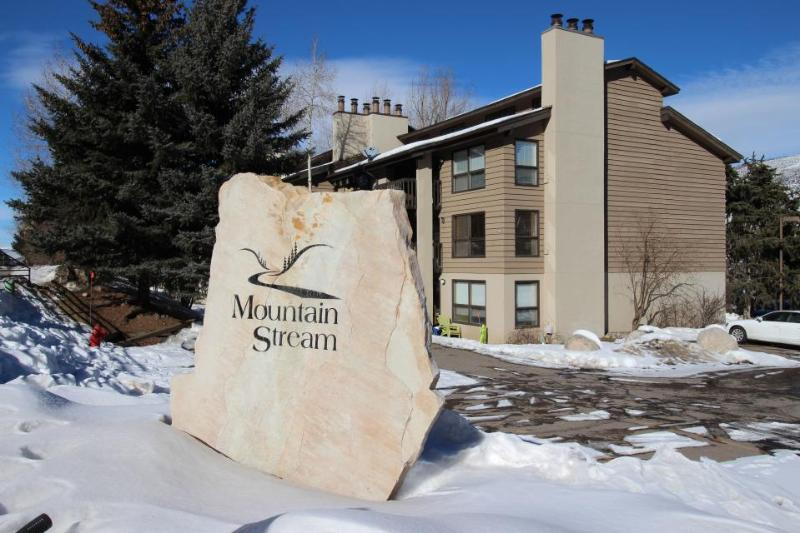 Mountain Stream Condo #B206 - Image 1 - Beaver Creek - rentals