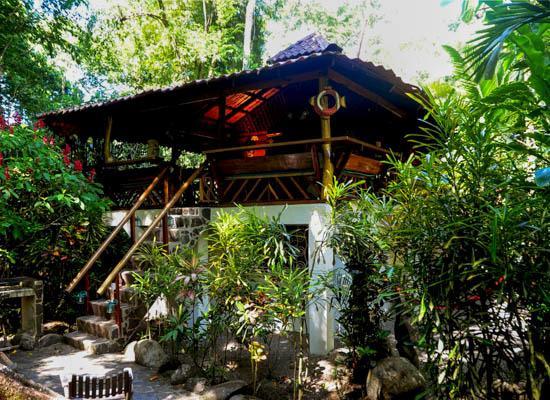 River Dream House @ congo-bongo - Image 1 - Puerto Viejo de Talamanca - rentals