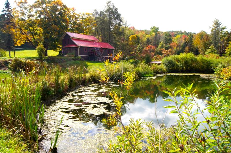 Beautiful Grounds and Scenery & different every season to come back to. - TWIN PONDS, Pet Friendly 6 room Farmhouse on 20 ac - Pittston - rentals