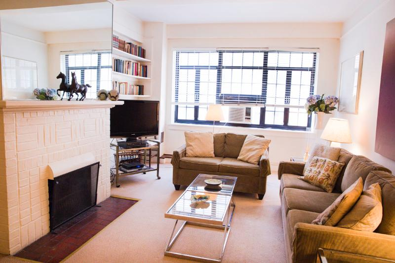 1BR E. 65th St. Steps from Central Park! - Image 1 - New York City - rentals