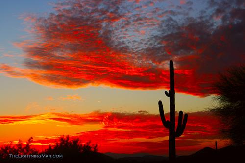 beautiful sunsets - Cozy Southwest Condo - Surprise - rentals