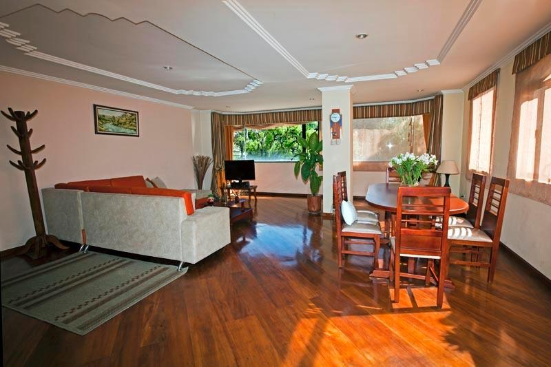 Living & Dining Room - River View Central Cuenca, In front of Pumapungo - Cuenca - rentals