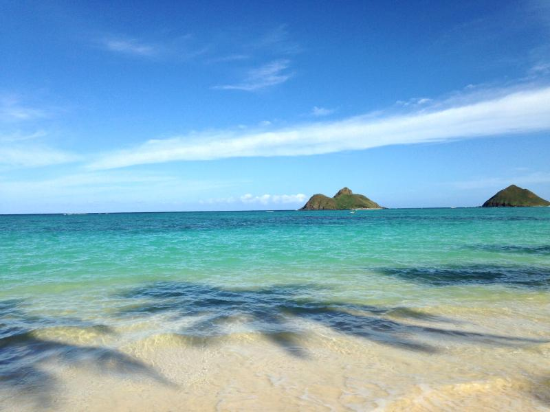 The Mokulua Islands - Large studio in beautiful Lanikai; steps to beach - Kailua - rentals