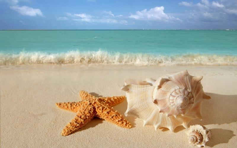Beauty in Paradise MAY SALE-$1,200 X WEEK - Image 1 - Cancun - rentals