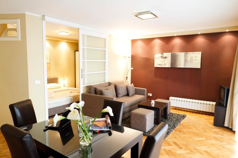 Overview on the living room & bedroom - Amazing One Bedroom DOWNTOWN Apt LITTLE BAY - Belgrade - rentals