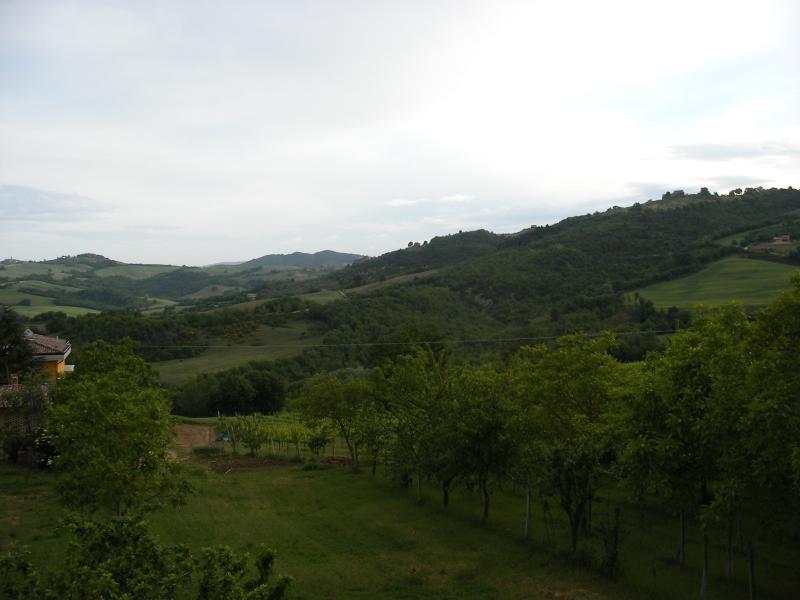 Casa Betti di Frontignano - Image 1 - Todi - rentals