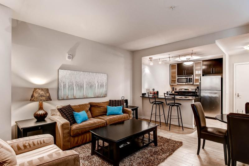 Living room - Lux 1BR near White House - Washington DC - rentals