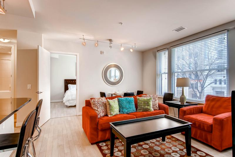 Living room - Lux 2BR near White House - Washington DC - rentals