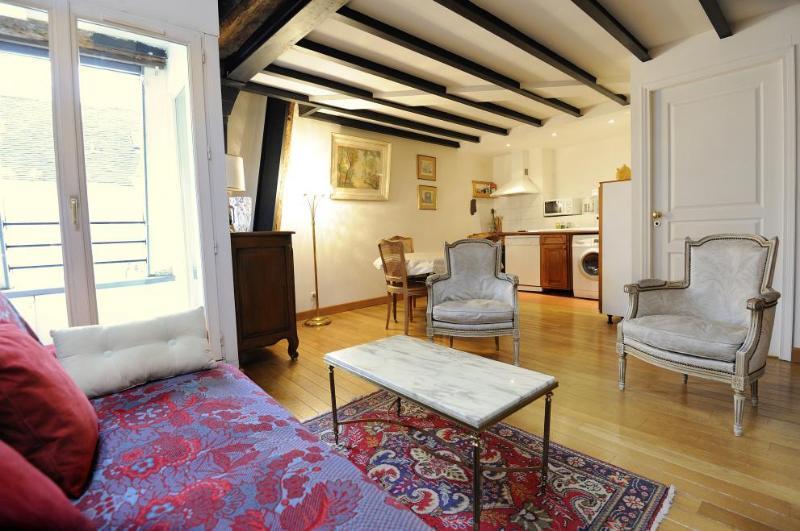 Classic 2 Bedroom Apartment in Paris - Image 1 - Paris - rentals