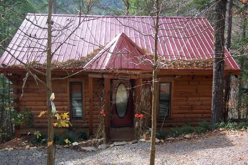 Manna .. best location!  Park, Cove, River, private, tin roof, log, sunroom - 'Manna' ... Amazing Location, Park, River, Cove - Townsend - rentals