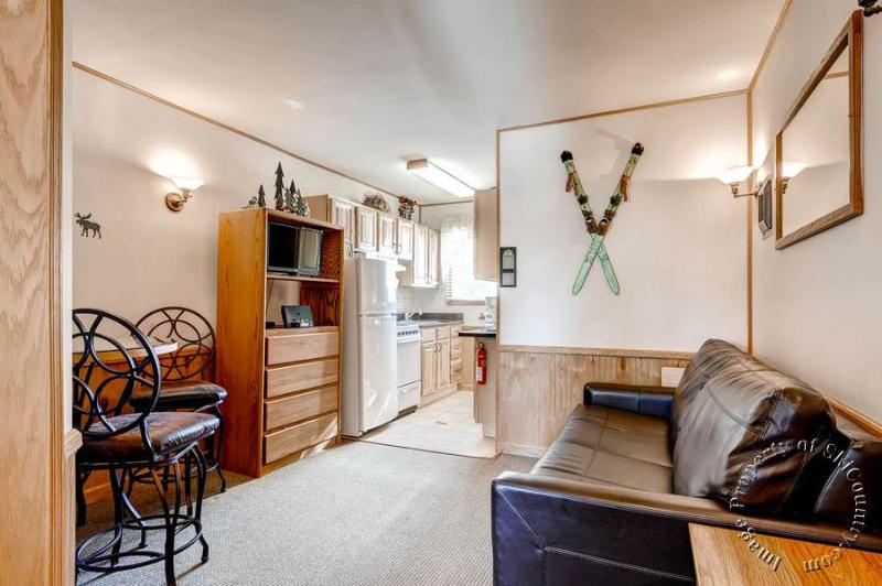 Park Meadows Lodge 7A by Ski Country Resorts - Image 1 - Breckenridge - rentals