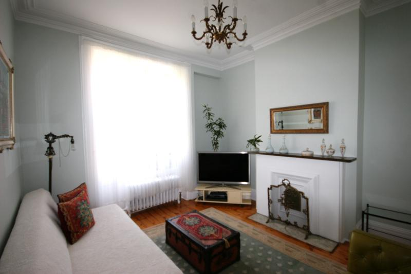 The living room view - Best Location 2BR Historical Townhouse Greenpoint - Brooklyn - rentals