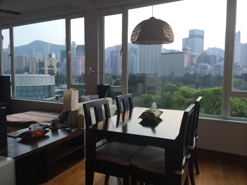 View from living room - AMAZING CITY/PARK/SEAVIEW APARTMENT HONG KONG - Hong Kong - rentals