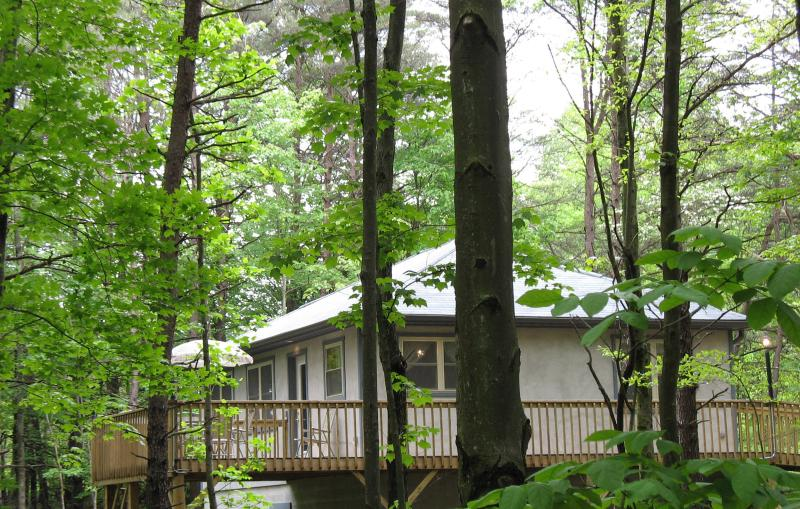 Honey Ridge offers a peaceful, private setting, surrounded by miles of woods. - Honey Ridge Cabins~ a quality experience! - Logan - rentals
