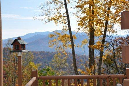 Vacationing Here is a Perfect Family Tradition - MooseHead Lodge - Mountainside Cabin with Sweeping Long Range Views Less than 15 Minutes from the Great Smoky Mountain Railroad - Bryson City - rentals