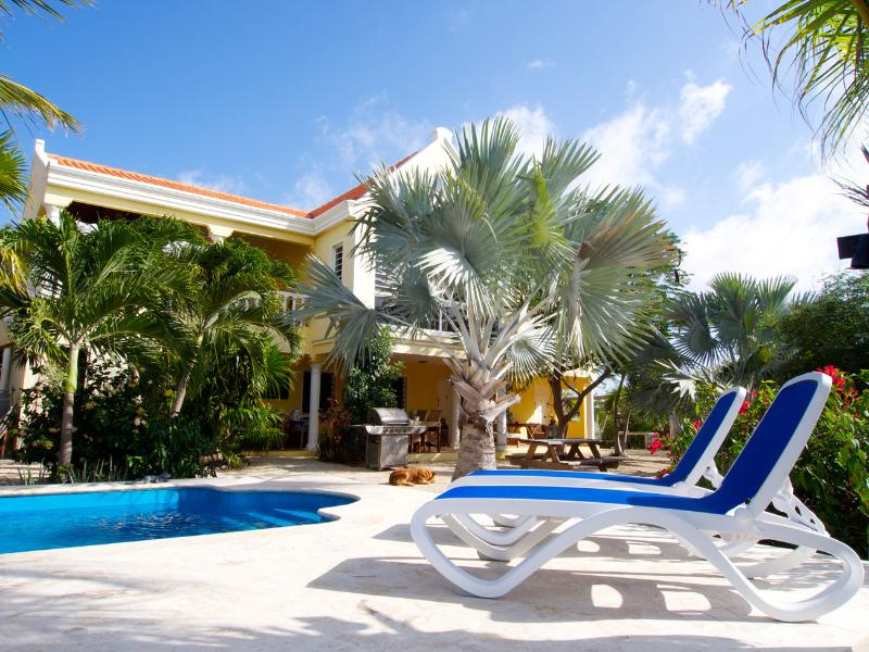 Pool and sun beds - Villa Alcyone - 4 perfect accommodations in great - Kralendijk - rentals